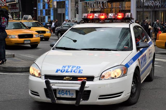 policejní auto.jpg