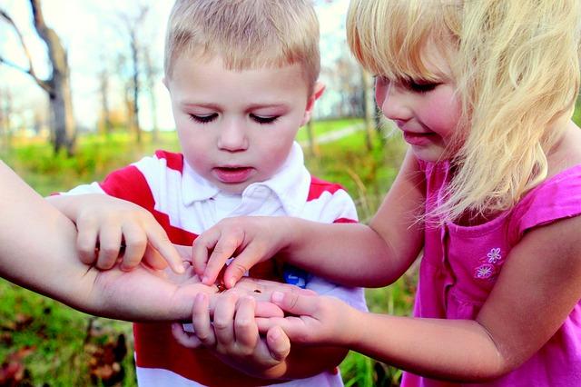 děti při sběru berušek
